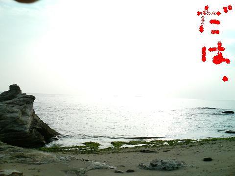 海の風景.JPG