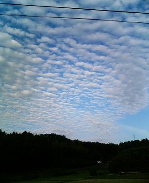 激烈うろこ雲.JPG