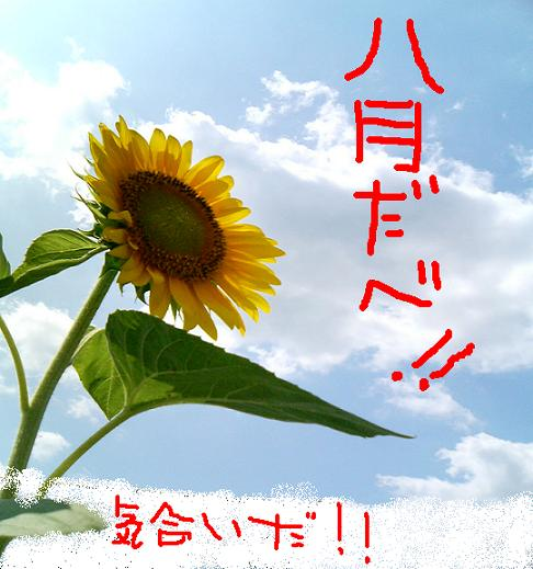 真夏のソアラ.JPG