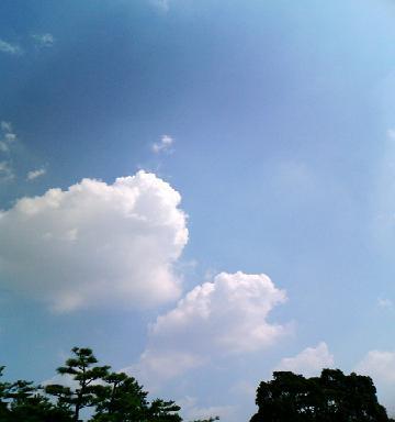雲だべ。。。よ。.JPG
